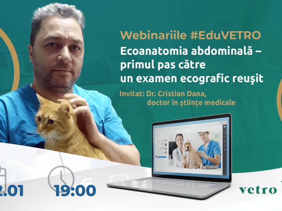 Ecoanatomia abdominală – primul pas către un examen ecografic reuşit