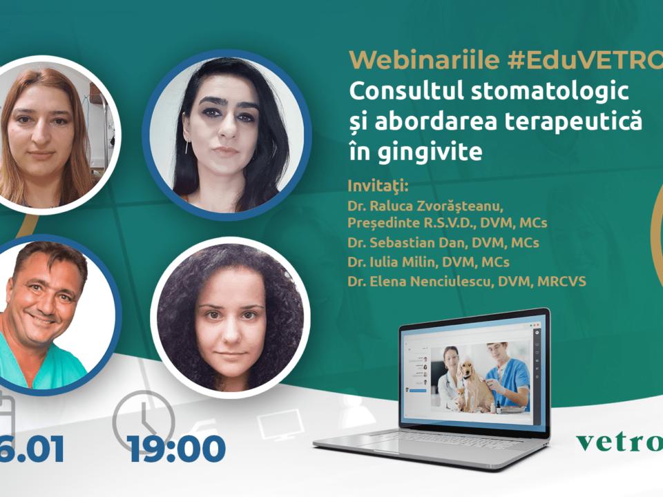 Consultul stomatologic și abordarea terapeutică în gingivite