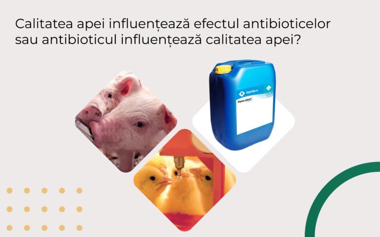 Calitatea apei influențează efectul antibioticelor sau antibioticul influențează calitatea apei?