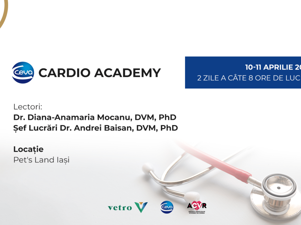 Workshop Ceva Cardio Academy